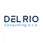 DEL RIO Consulting: HOW SMEs GROW