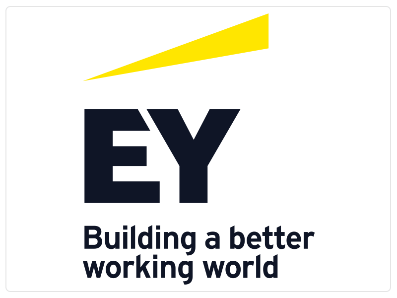 EY (Assurance, Tax, Transactions and Advisory Services)